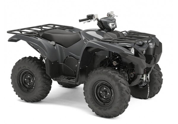 GRIZZLY 700 EPS GREY